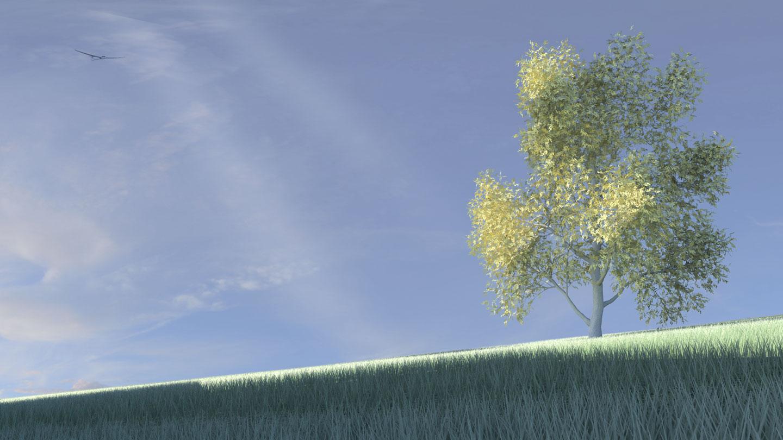 Image de synthèse, Image 3D, Perspective 3D, Rendu 3D, Rendu numérique, Maya
